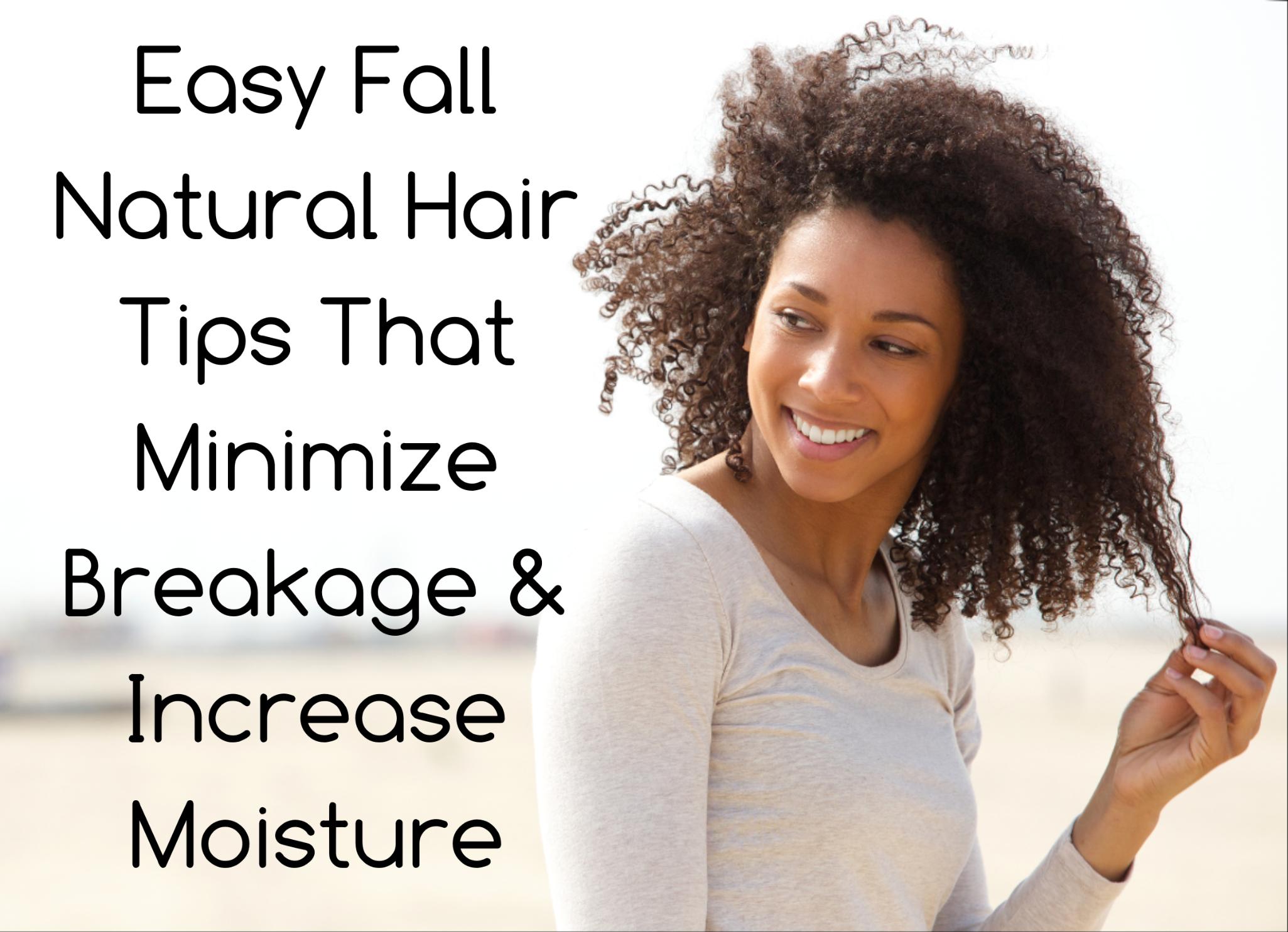 Fall Natural Hair Tips Minimize Breakage Increase Moisture